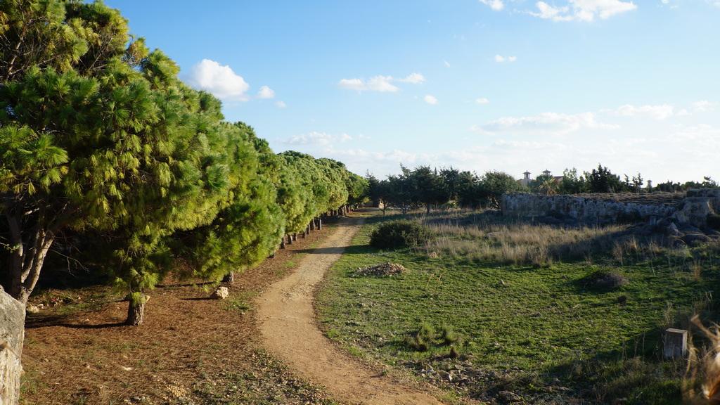 Типичный конец ноября на Кипре